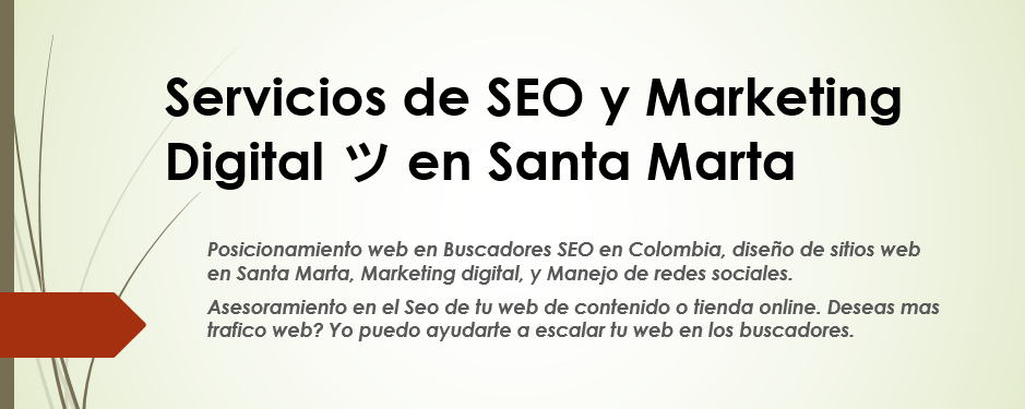 Servicios de SEO y Marketing Digital